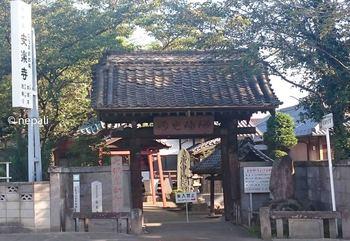 DSC_0012安楽寺.jpg
