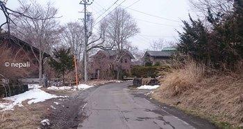 DSC_0021旧道.jpg