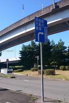 DSC_0045歩行者自転車標識.jpg