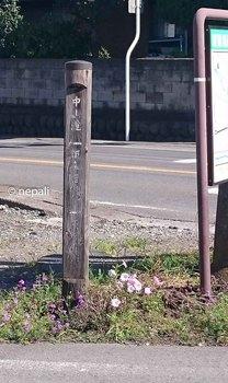 DSC_0059信州道分れ道標.jpg