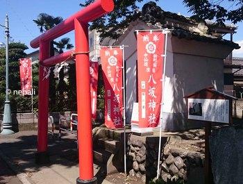 DSC_0066八坂神社.jpg