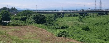 DSC_0104柳瀬橋.jpg