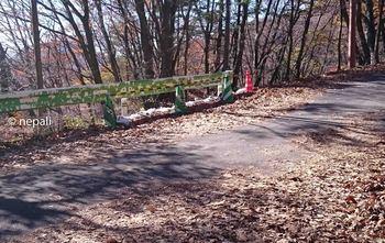 DSC_0136舗装路を斜め右に横断.jpg