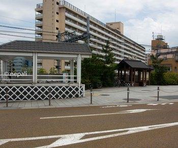 DSC_2637広場.jpg