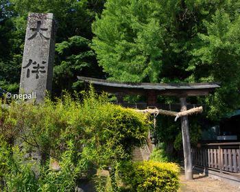DSC_2654大伴神社.jpg
