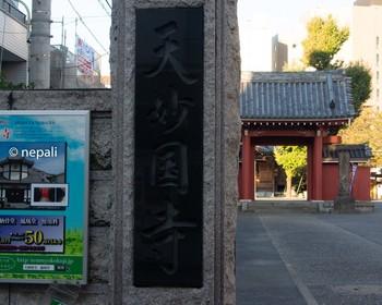 DSC_2898天妙国寺.jpg