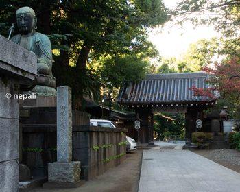 DSC_2903品川寺.jpg