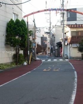 DSC_2906鮫洲.jpg