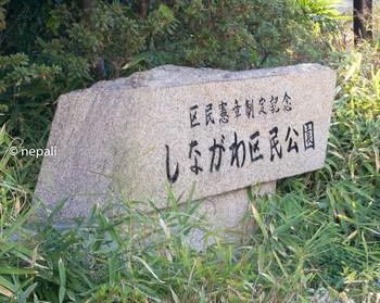 DSC_2910しながわ区民公園.jpg