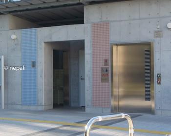 DSC_2911しながわ区民公園トイレ.jpg