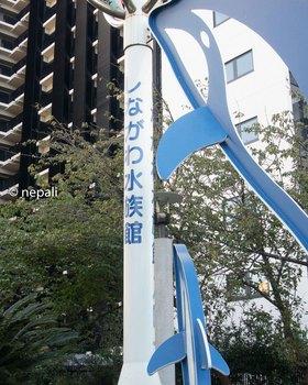 DSC_2916しながわ水族館.jpg