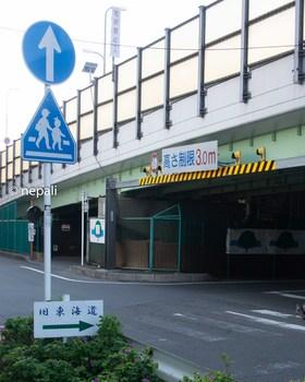 DSC_2950新六郷橋をくぐる.jpg