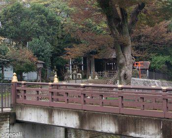 DSC_3069外川神社.jpg