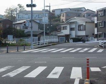 DSC_3137舞岡川.jpg