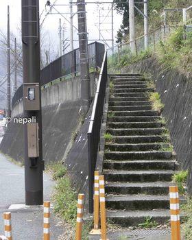 DSC_3541階段を上る.jpg