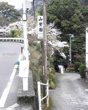 DSC_3557旧道入口.jpg