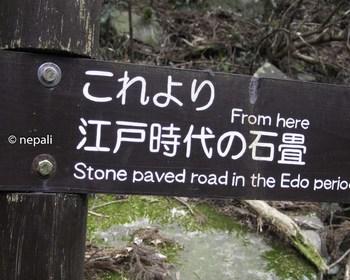 DSC_3607江戸時代の石畳終点.jpg