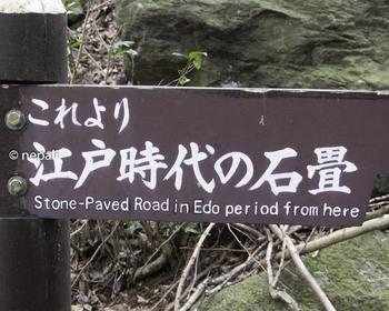 DSC_3613江戸時代の石畳終点.jpg