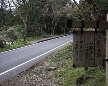DSC_3618県道合流ポイント.jpg