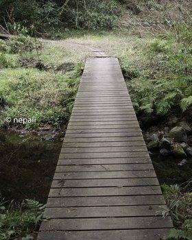 DSC_3622木の小橋.jpg