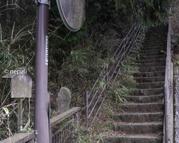 DSC_3657橿木坂.jpg