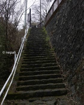 DSC_3672急な階段.jpg