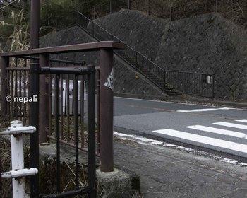 DSC_3673横断歩道.jpg