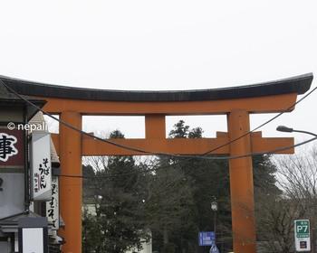 DSC_3723箱根神社大鳥居.jpg