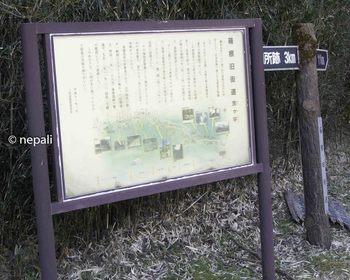 DSC_3797旧道入口.jpg