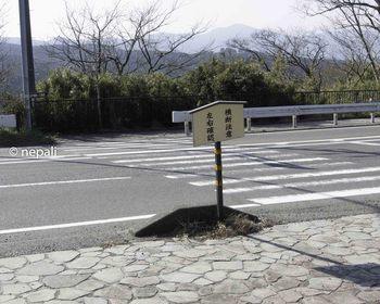 DSC_3823横断歩道を渡る.jpg