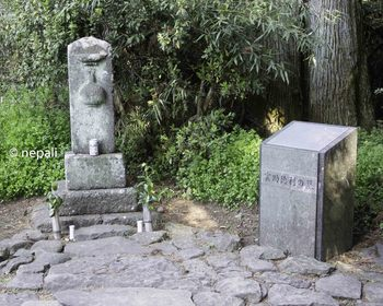 DSC_3828雲助徳利の墓.jpg