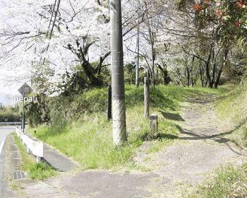 DSC_3891旧道入口.jpg