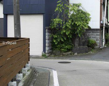 DSC_3969長栄寺.jpg