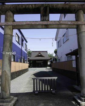 DSC_4274西宮神社.jpg