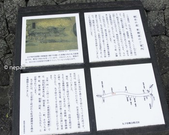 DSC_4319東海道案内板.jpg