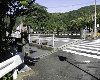 DSC_4344丸子橋.jpg