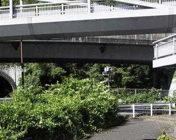 DSC_4372宇津ノ谷峠入口.jpg
