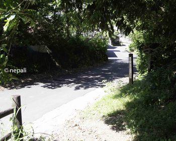 DSC_4409舗装路に出る.jpg