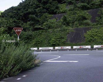 DSC_4412国道合流点.jpg