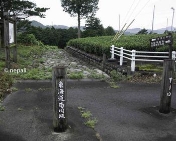 DSC_4671菊川坂下り口.jpg