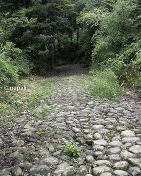 DSC_4688江戸後期の石畳.jpg