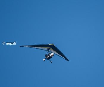 KSR_2850グライダー.jpg