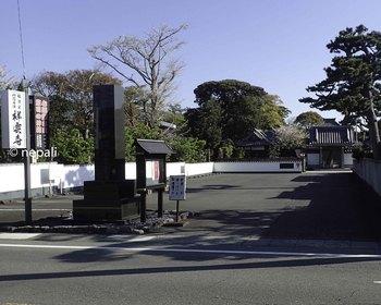 P4130027祥雲寺.jpg