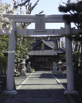 P4130039浅間神社.jpg
