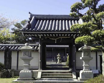 P4130052大通禅寺.jpg