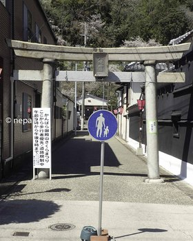 P4130218八坂神社.jpg