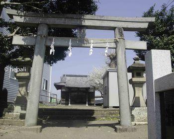 TKD_2734八幡神社.jpg